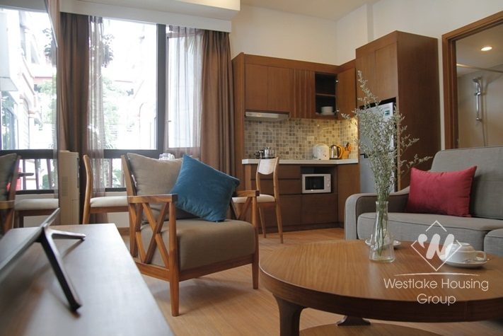 Brand new stylish apartment for rent in Ba Dinh