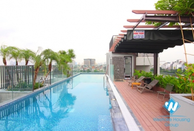 High quality and new 02 bedrooms with swimming pool on the top floor for rent in Tu Hoa St