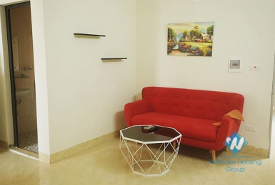 Reasonable price 1 bedroom apartment for rent in Ba Dinh district, Ha Noi.