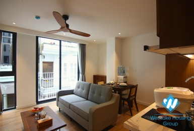 A lovely serviced apartment in Japanese style for rent in Ba Dinh District