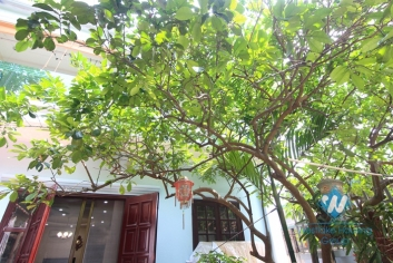 Courtyard garden 2 storey house for rent in Tay Ho, Hanoi