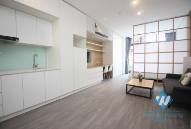 Brand new apartment for rent in Ba Dinh, Hanoi